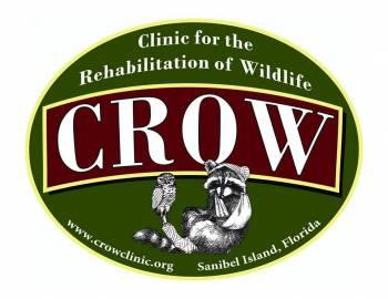 CROW Clinic