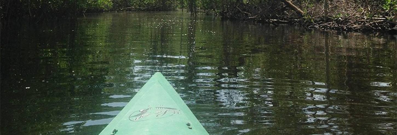 Tarpon Bay Explorers Kayak