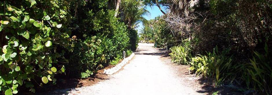 Secluded island walking path