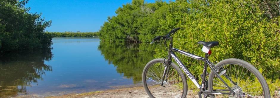 Bicycle in Ding Darling