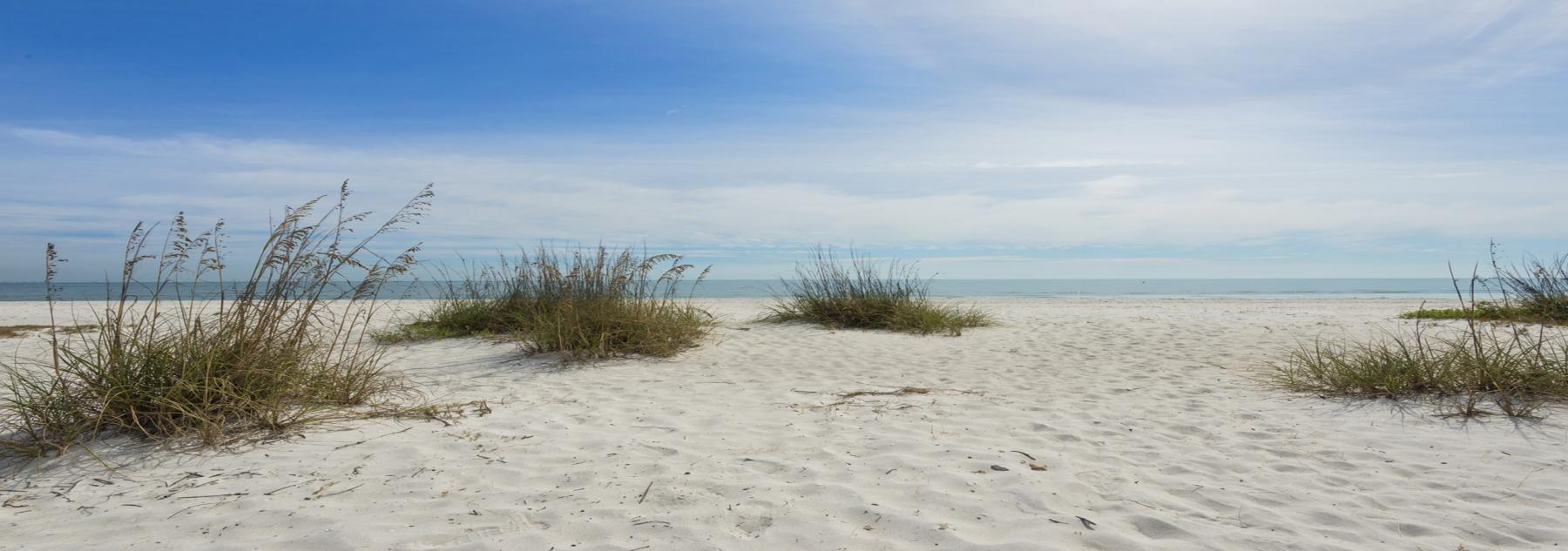 Sanibel Beach and greenery
