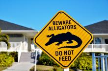 Beware Alligators sign
