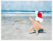 Starfish on Beach with Santa hat