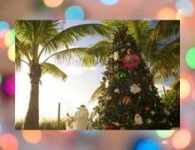 Christmas on Sanibel