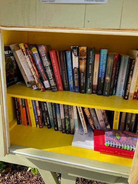 Little Free Library selections