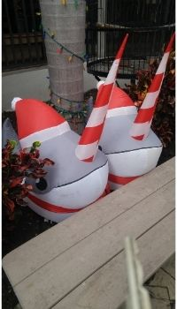 candy-cane-horned Christmas Narwhals at Jerry's Plaza