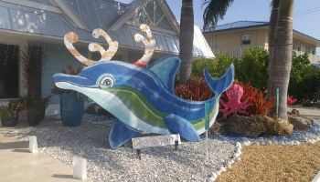 Rudolphin…a reinphin?