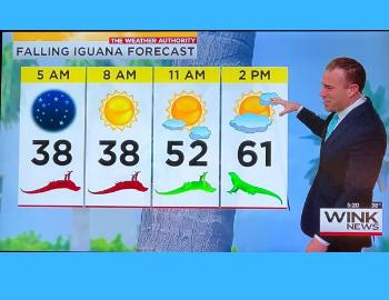 Wink News Iguana Forecast