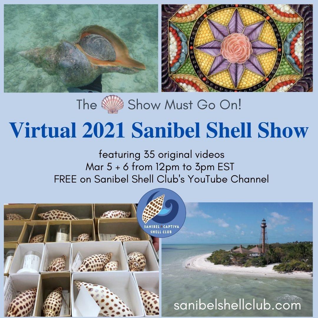 Virtual 2021 Sanibel Shell Show